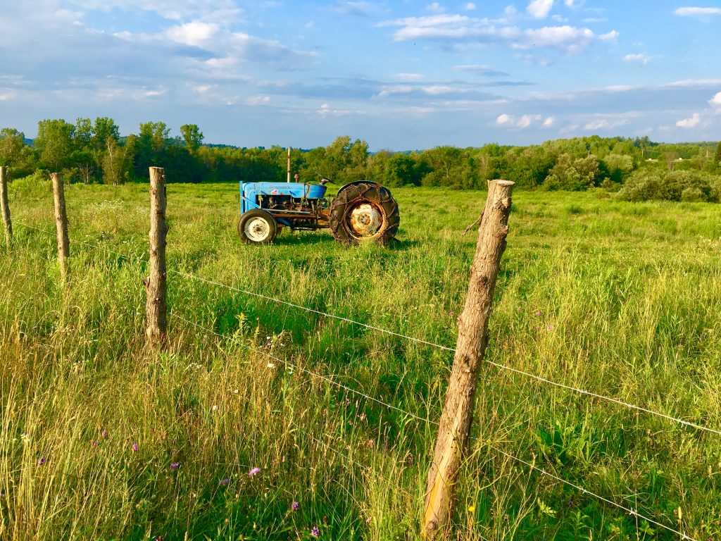 _photo tracteur dans le champ
