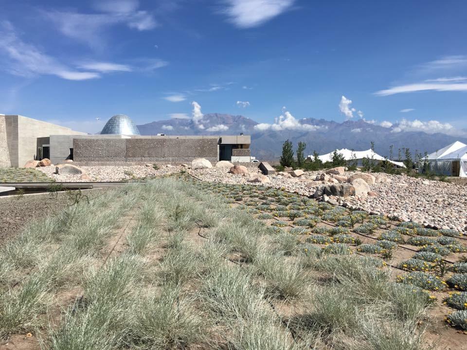 Photo du vignoble Zuccardi dans la Vallée de UCO