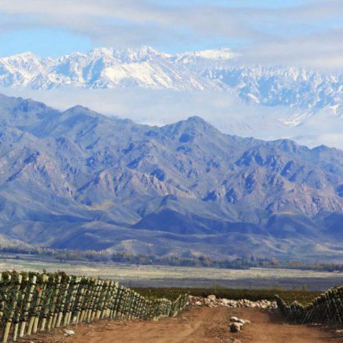 _photo desert Argentine